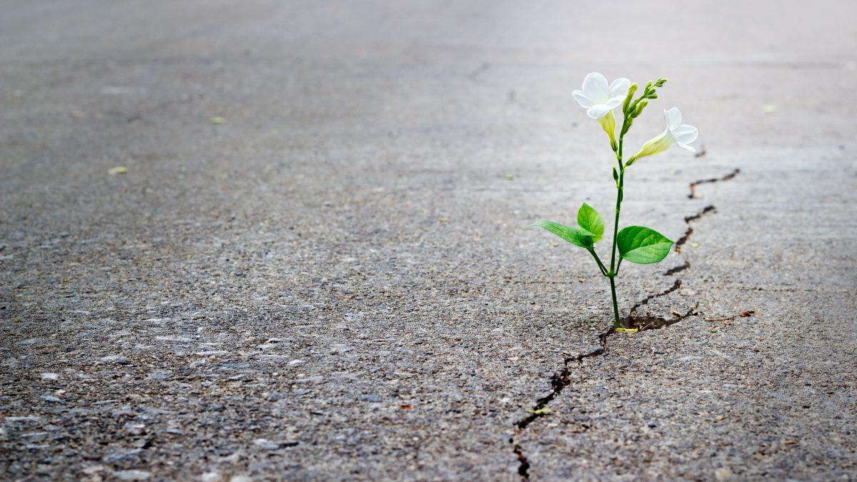 3 raisons de garder espoir
